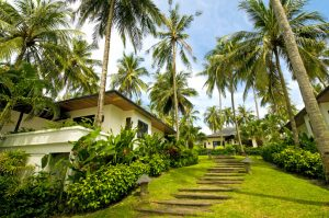 Luxury and Exotic Villa In The Tropics